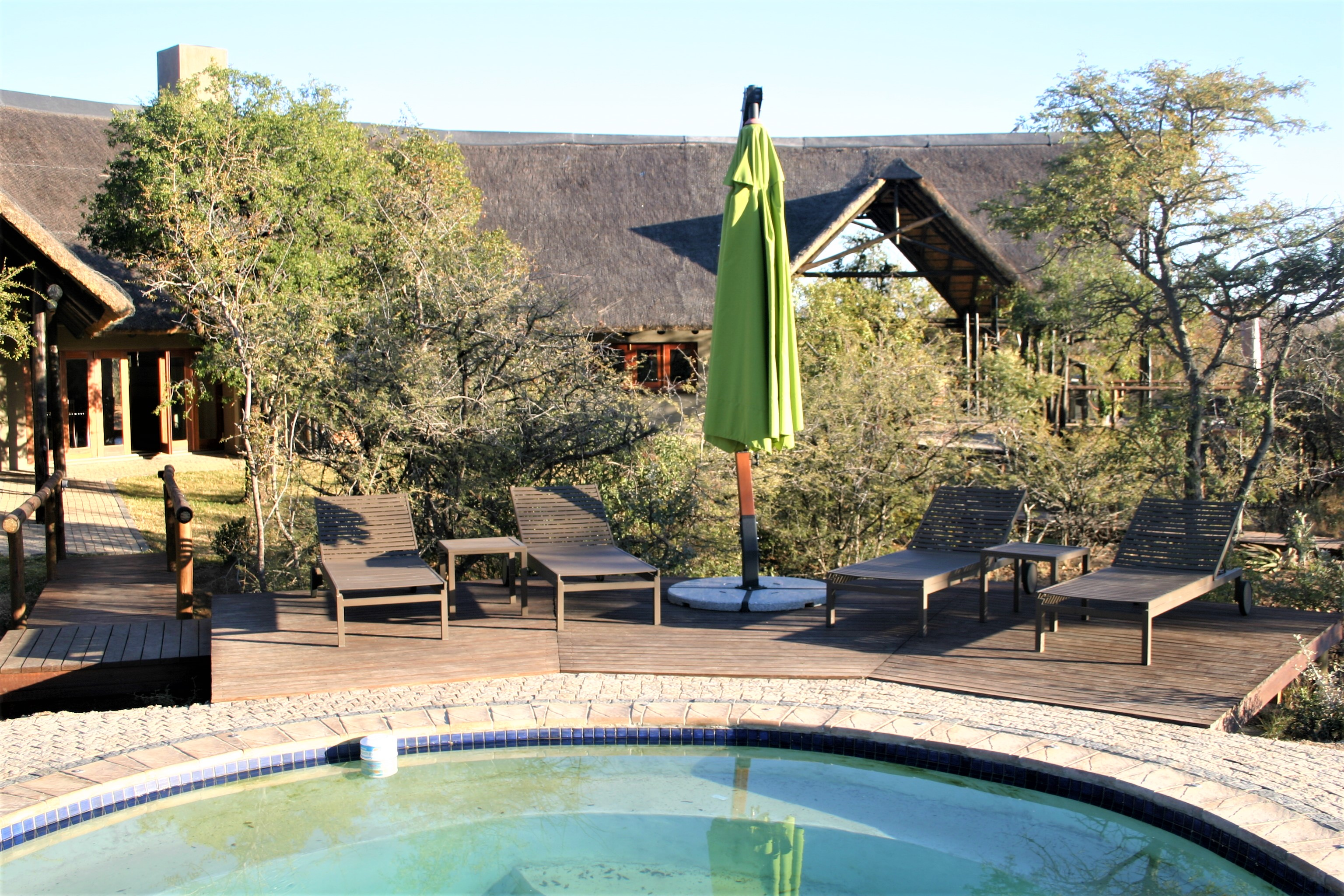 Main Pool at Black Rhino