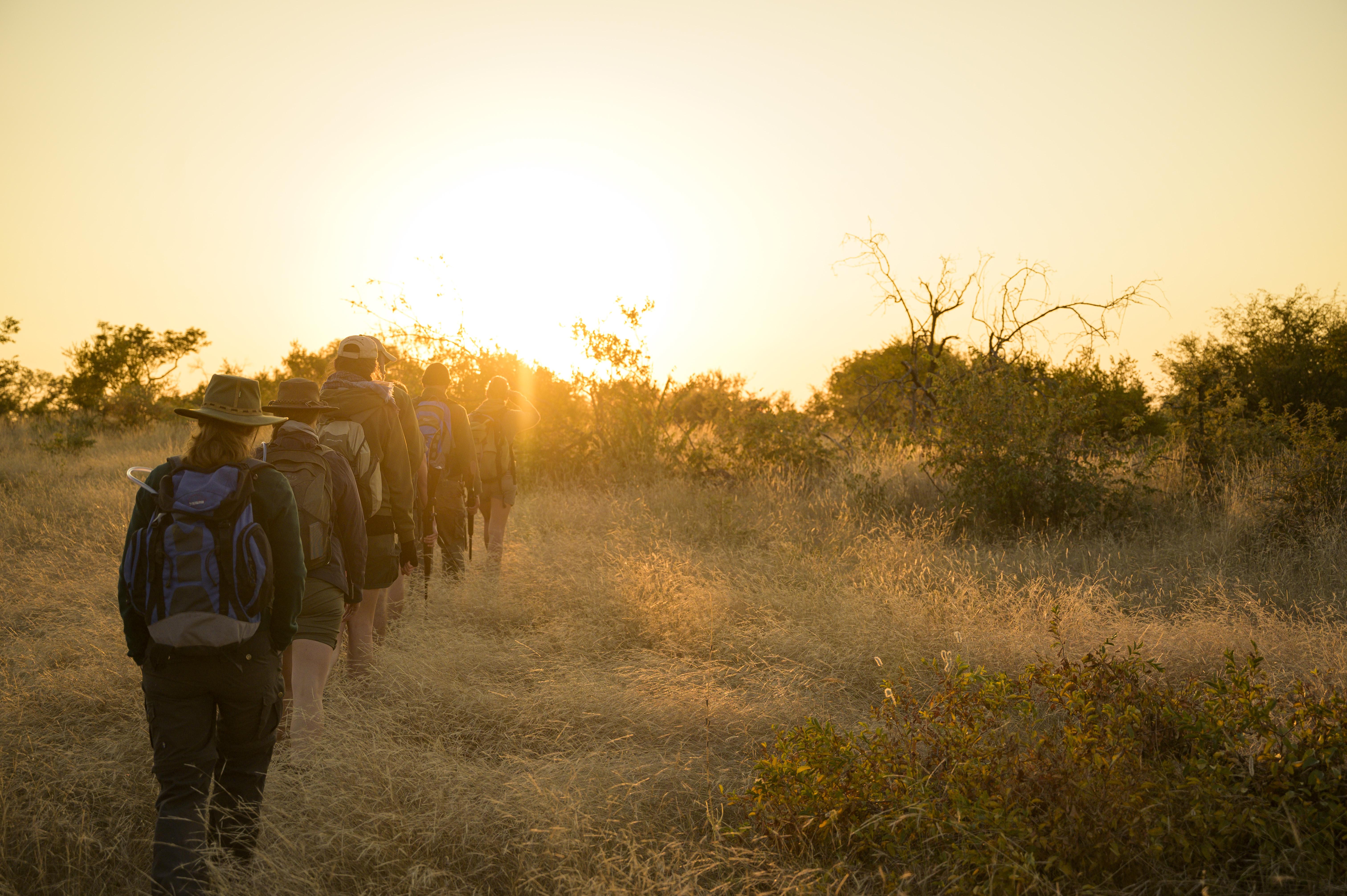 EcoTraining Nature Courses