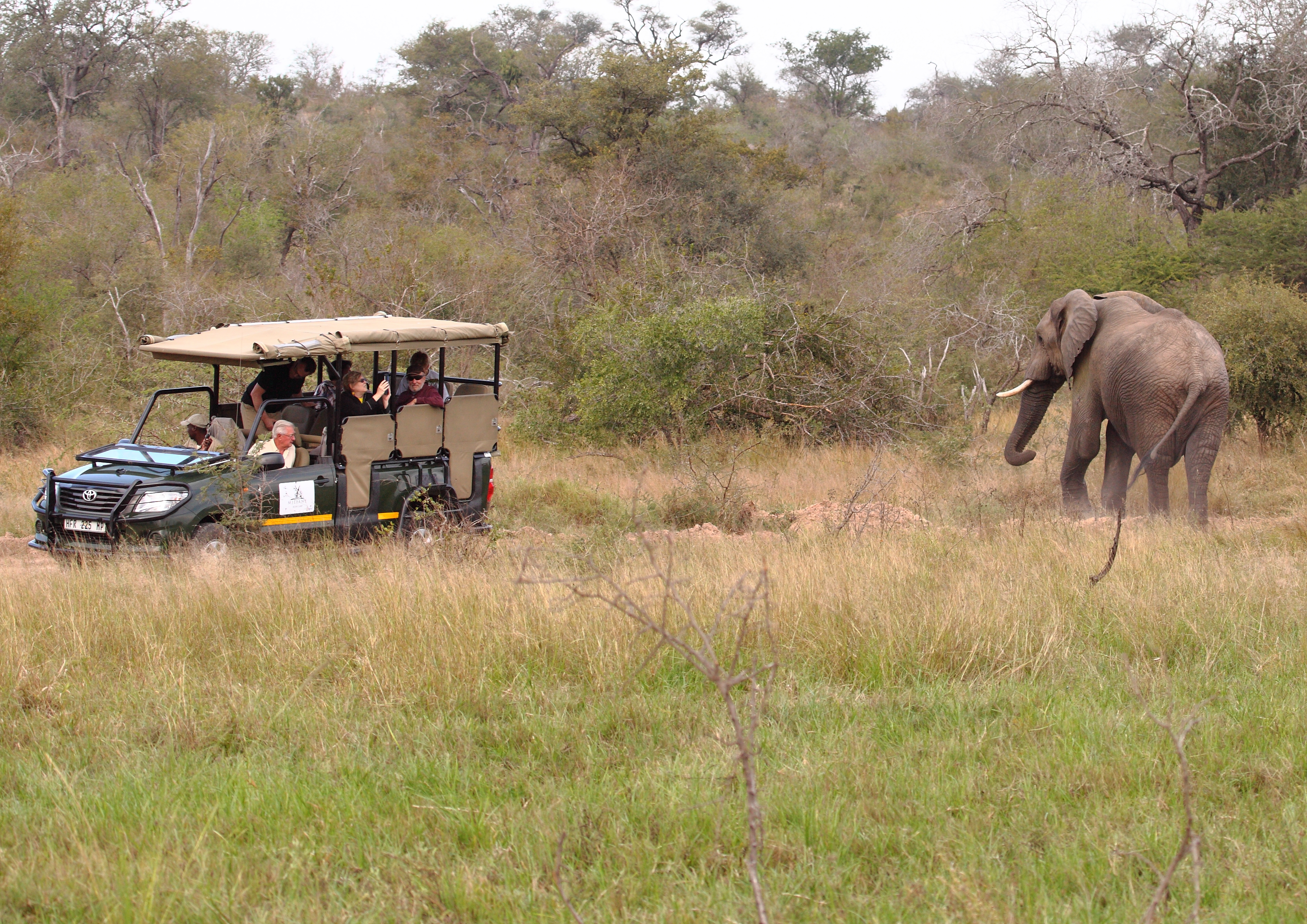 Access to Safari Vehicles