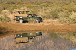 Private Big 5 Game Drives