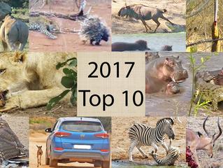 2017's Top 10 Best Sightings