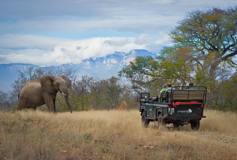 EcoTraining Wildlife Courses