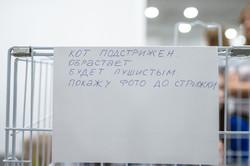 www.fotooren.ru