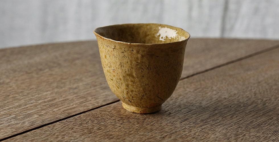 清水志郎 Teacup ESS2002