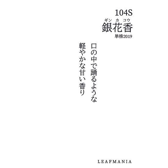 104s 銀花香(単株)Yin Hua Xiang(Single bush)