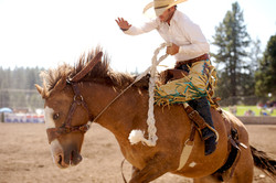 Bronc Rider  001
