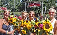 Sunflower Group 2.jpg