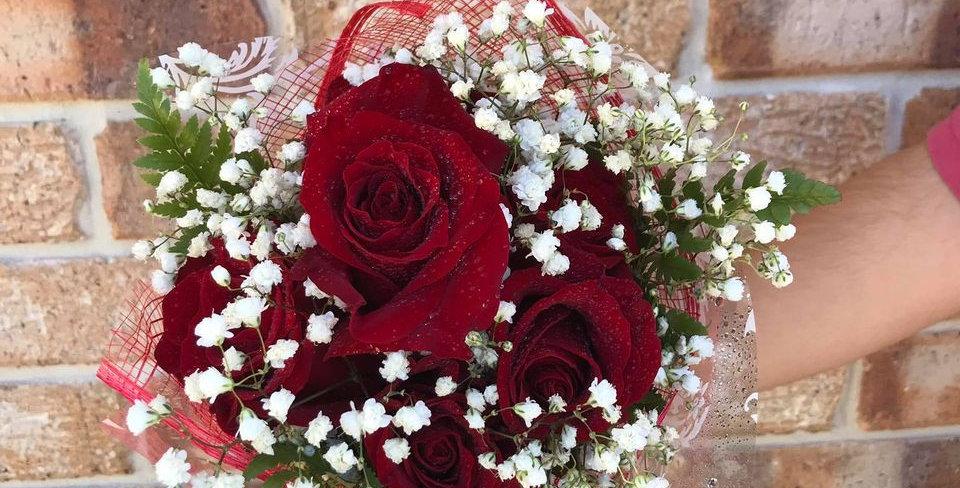 6 Long  Stem's  of  Valentine Rose's