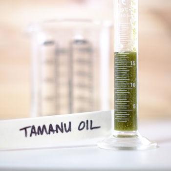 TAMANU OIL.JPG