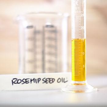 ROSEHIP SEED OIL.JPG