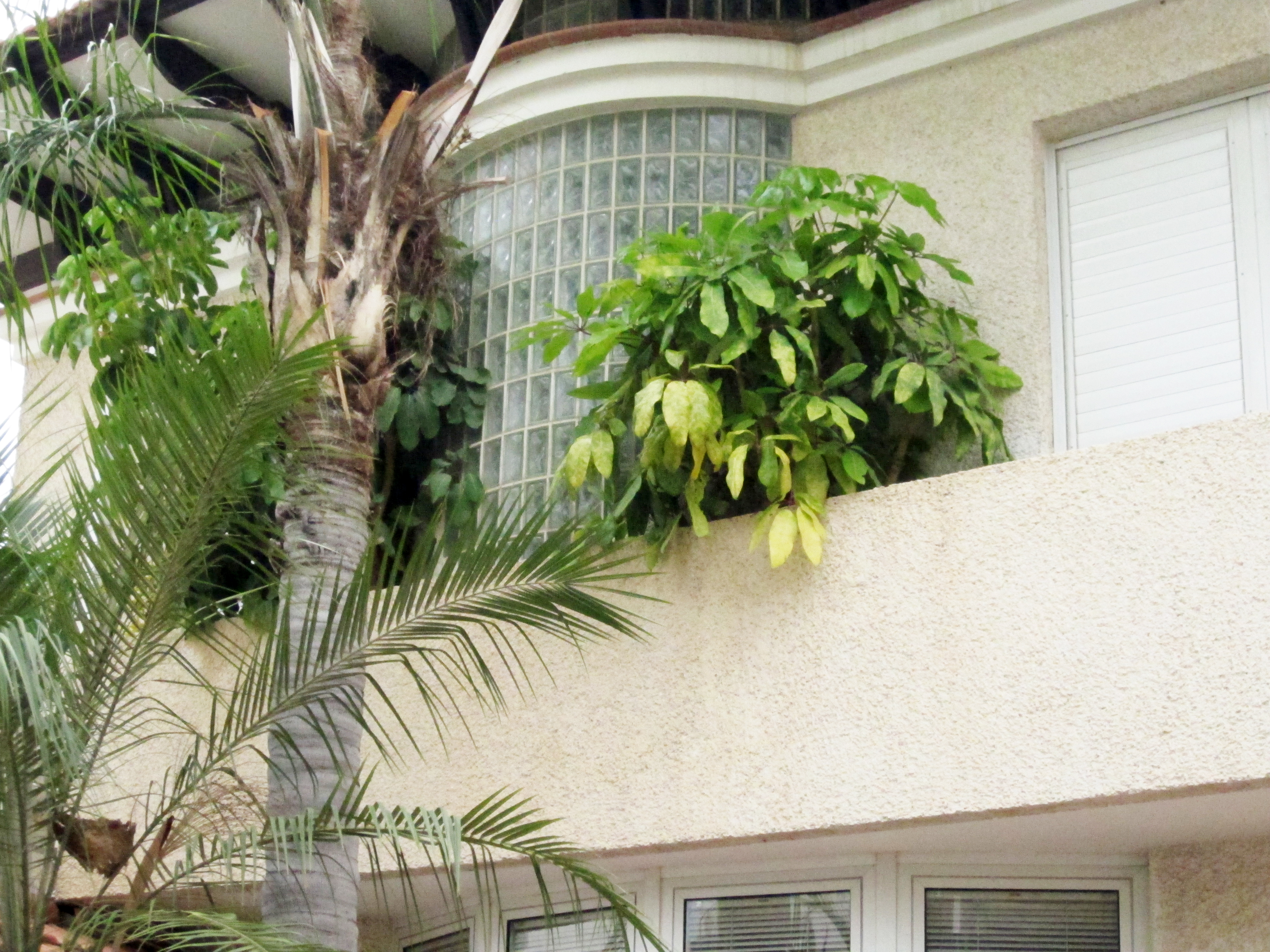 Private villa Tel Aviv