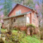 011_9650_fox_1_edit_2_web_edited.jpg
