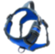 Black Rhino Dog Harness