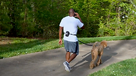 Black Rhino Best Running Dog Leash