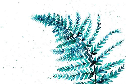 Blue Fern Leaf