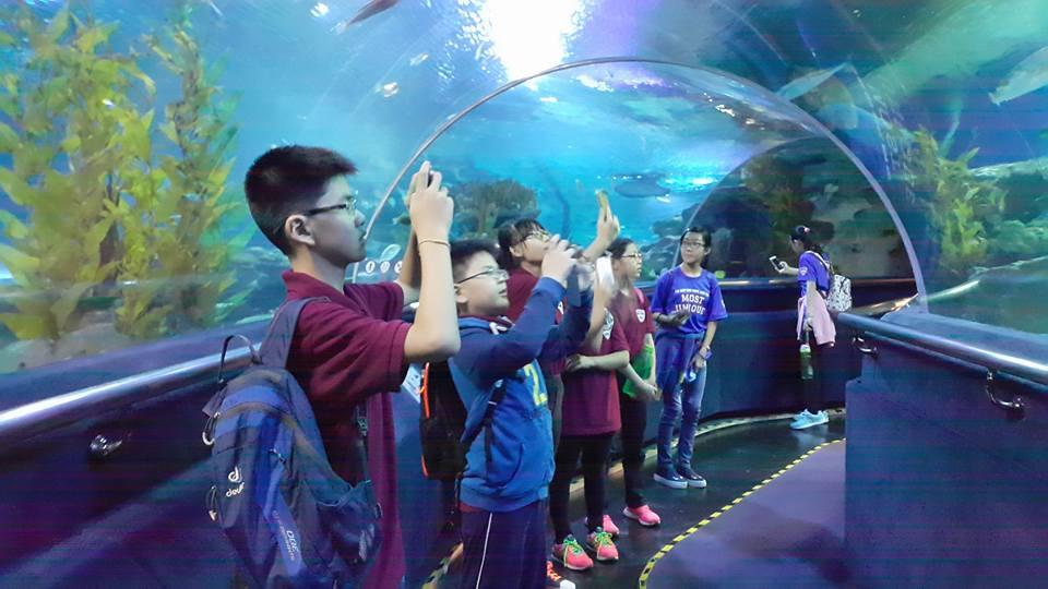 Field Trip to Aquaria