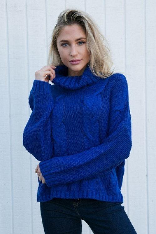 Blue Sweater Turtleneck