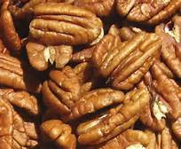 Ode to the Pecan!!!!!