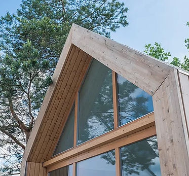 house tree.jpg