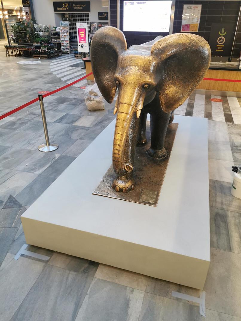 Mikrosement rundt sitteplass, Elefanten