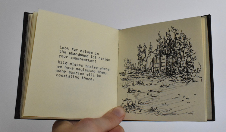 A Guide to Being in Nature for the 21st Century Human Pg. 6