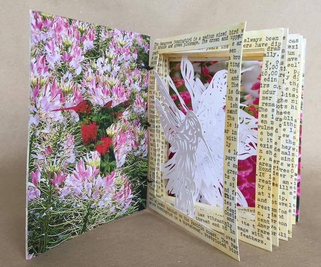 The Fragility of Hummingbirds