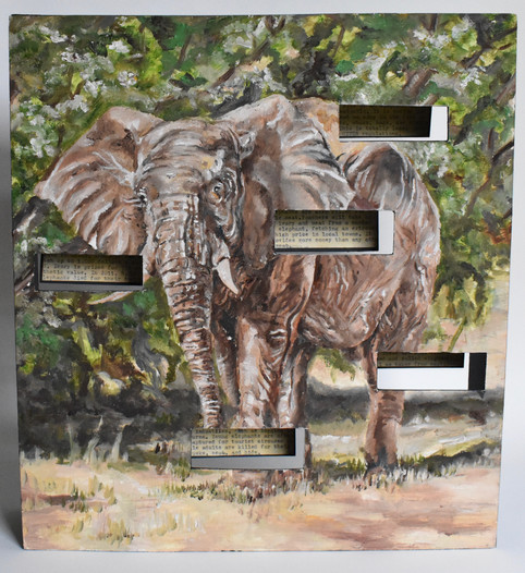 Behind the Scenes: Elephants, Their Parts and Uses