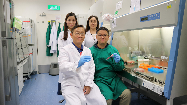 Bảo quản tế bào gốc ở dạng khối cầu: Phương pháp mới có thể bảo quản ở nhiệt độ phòng