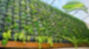 Jardineria Vertical, vertical garden, jardin vertical.