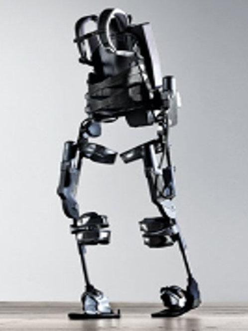Wearable Robots, Exoskeletons