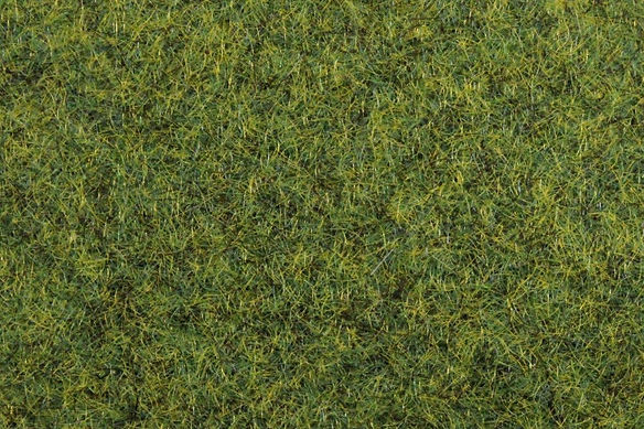 Light Green Static Grass (1).jpg