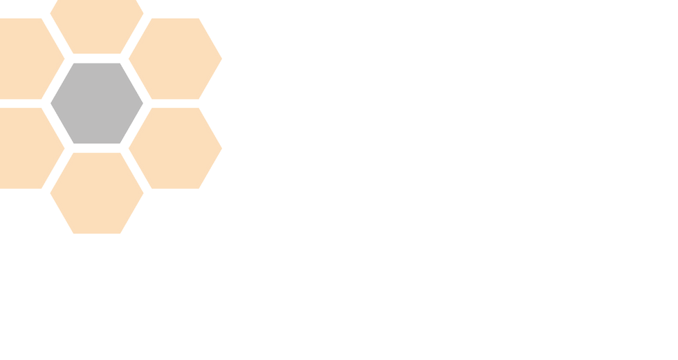 hdls_honeycomb_icon_02.png
