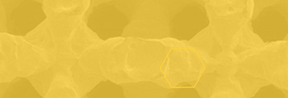 bg yellow.png