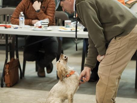 Gun Dog Training Seminar!!!