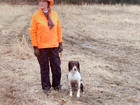 Susan & Dudley's 24 Seconds At The Field Trial