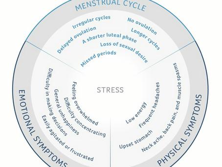 Stress heeft een negatief effect op je menstruatiecyclus, hoe zit dat precies?