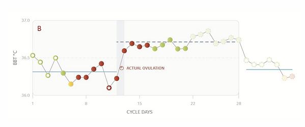 daysy cycluscomputer en ovulatie voorspe