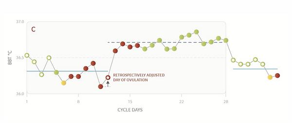 daysy ovulatie voorspelling eisprong.png