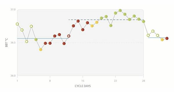 stijging temperatuur daysy cycluscompute