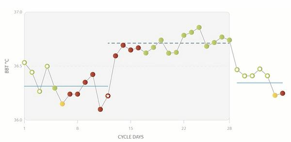 verloop menstruatiecyclus daysy cyclusco
