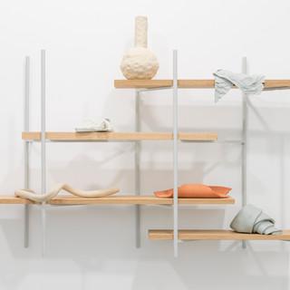 Shelves (Physical Learning) III