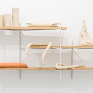 Shelves (Physical Learning) IV