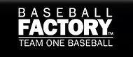 Team One Baseball Factory