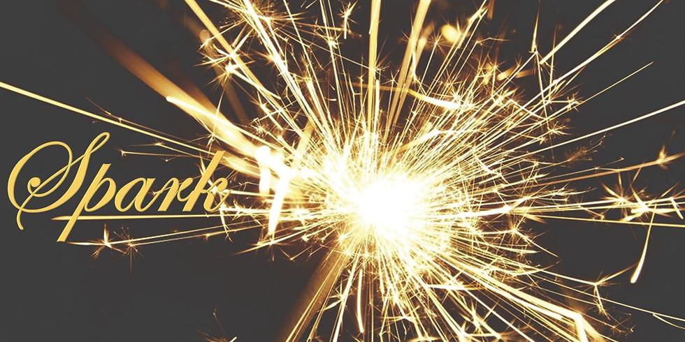 COURSE: Spark!