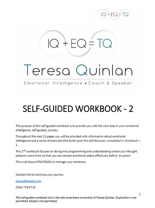 Self Guided Workbook 2 - My Emotional Intelligence