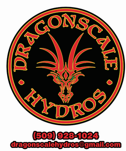 Dragonscale3 SNAG.PNG
