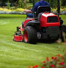 gardener leicester, grounds maintenance leicester, gemini grounds and gardens, grass cutting, garden maintenance, gound maintenance