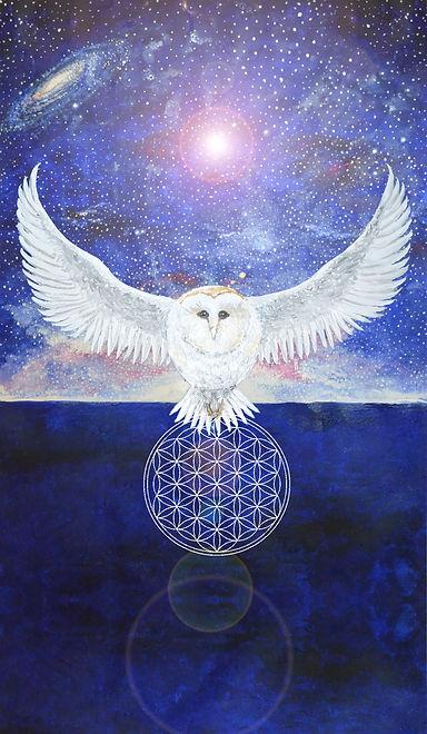 flower of life sky owl 3.jpg