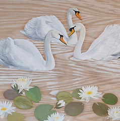 swans lilywood.jpg
