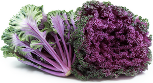 kale púrpura